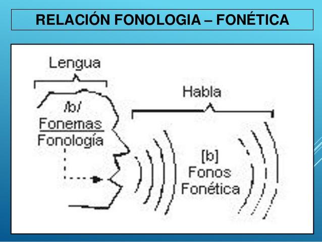 fonologa-y-fonetica-5-638