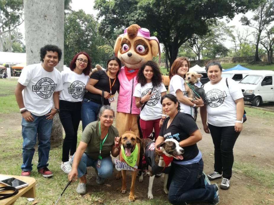 Adopción de perritos 10092018 2