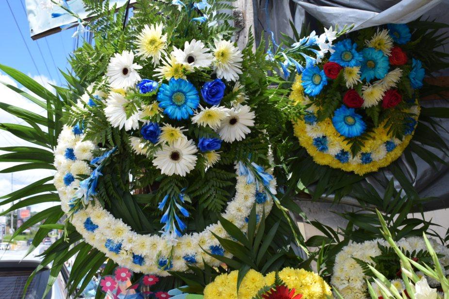 Vive Entre Flores Y Coronas Esu