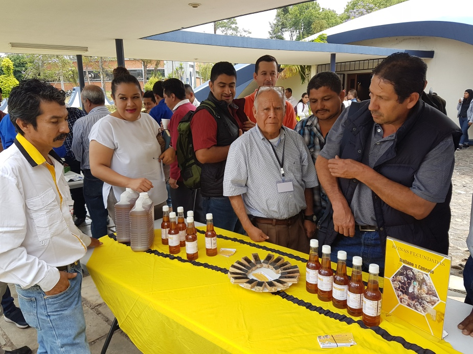 apicultura ventas