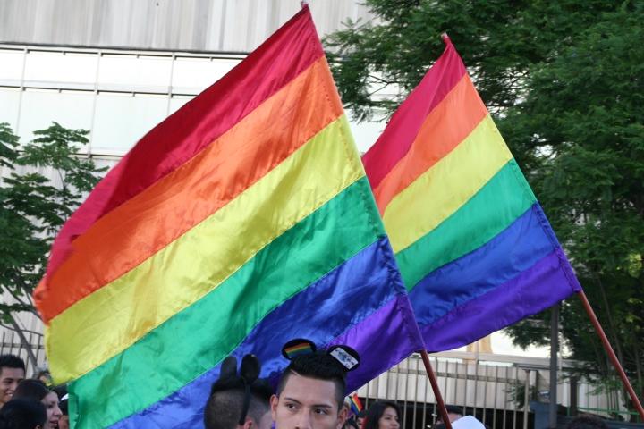 Diversidad sexual (2)