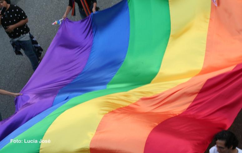 Diversidad sexual (8)