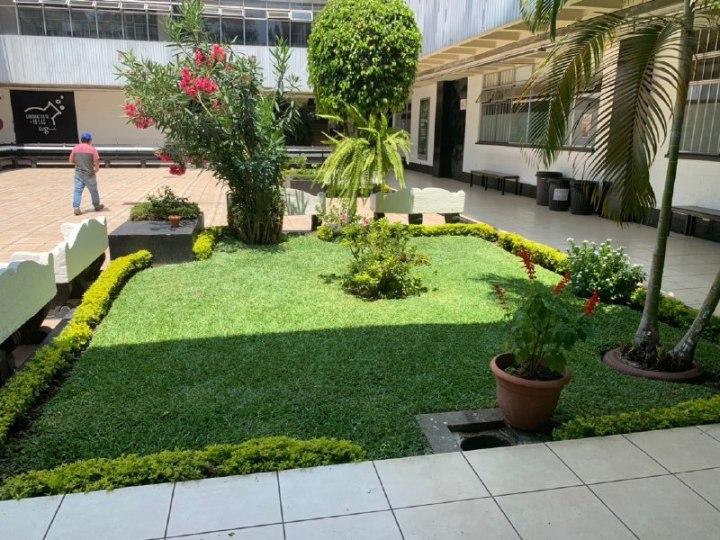 Jardin M2