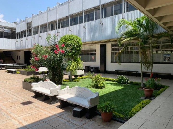 Patio y jardin m2