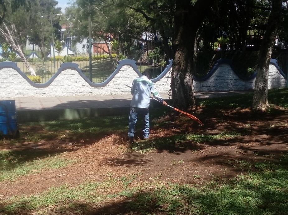limpieza y manteminiento de áreas verdes